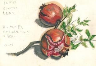 「柘榴」1978年.jpg