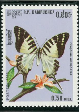 オナガタイマイ(1986年カンボジア発行).jpg