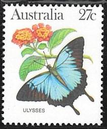 オオルリアゲハ(1983年オーストラリア).jpg